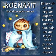 KOENAAIT Soet droompies droom! Good Day, Good Night, Goeie Nag, Goeie More, Afrikaans, Winnie The Pooh, Disney Characters, Fictional Characters, Teddy Bear