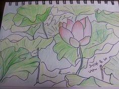 군자의 꽃 ~연꽃
