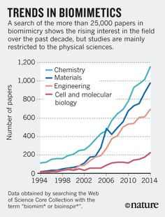 Interdisciplinarity: Bring biologists into biomimetics : Nature News & Comment