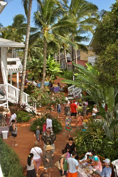 Every Wednesday afternoon, the Kukuiula Shopping Village in Poipu hosts the Kauai Culinary Market.
