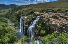 forest - Google Search Victoria West, Park Lodge, Wild Forest, Holiday Resort, Kruger National Park, Adventure Activities, Game Reserve, Africa Travel, Hiking Trails