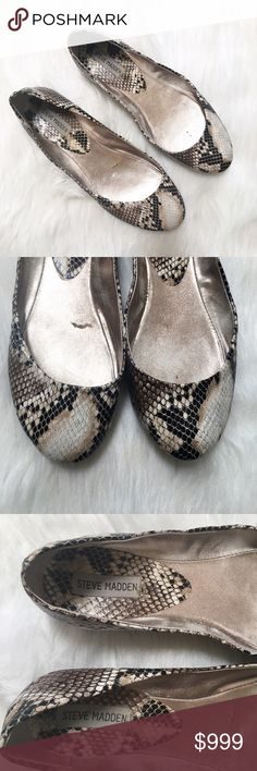 Steve Madden Snakeskin Print Ballet Flats Stay tuned! Steve Madden Shoes Flats & Loafers
