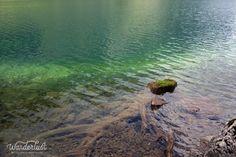 Water so clear, Seealpsea