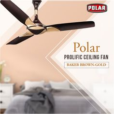 Polar brings to you ceiling fan with the innovative and contemporary design that will surely enhance the beauty of your interior. Led Outdoor Wall Lights, Solar String Lights, Best Ceiling Fans, Ceiling Fan With Remote, Ceiling Fan Globes, Ceiling Lights, Snowflake Christmas Lights, Flower Fairy Lights, Home Lighting
