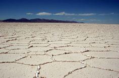 Sal Atacama | Insoli