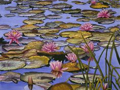Water Lilies by Thelma Winter