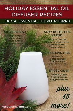20 Holiday Essential Oil Diffuser Recipes That Will Fill Your Home with Cheer #Essentialoilrecipes