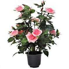Brighten up your garden with this Artificial Rose bush! This artificial plant will last for years and measures approximately tall including the black plastic pot. Rose Bush, Plastic Pots, Garden Gifts, Artificial Plants, Flora, Pink, Beautiful, Black, Plastic Plant Pots