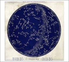 Astrological Chart Framed Print #potterybarn
