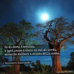 Se mi desti t'ascolto, | e ogni pausa è cielo in cui mi perdo, | serenità d'alberi a chiaro della notte.  [Tratta da: Acque e terre]