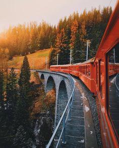 This train reminds me of the Hogwarts Express Art It, Haunted Tree, Bernina Express, Nature Photography, Travel Photography, Landscape Photography, Photo Instagram, Disney Instagram, Hogwarts