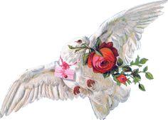 Przepiękny Ptak  Przepiękny Kwiat  To jego śpiew też będzie przepiękny