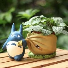 Where is Totoro going with that sack of acorns? Home, to your fairy garden! This adorable Totoro planter comes apart so you can easily water and tend to mini plants and succulents. Totoro planter is a fun addition to a bookshelf, window ledge or desk to Resin Planters, Garden Planters, Planting Succulents, Succulent Plants, Succulent Terrarium, Succulent Display, Planter Pots, Outdoor Planters, Indoor Garden