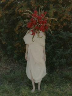 head of flowers