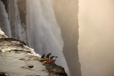 Victoria Falls, Zambia - photo by Desré Pickers - people's choice winner for Red Bull Illume picture this, crazy people, victoria falls, bull illum, red bull, africa, kayak, fall photos, desré picker