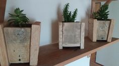 wooden flowerpot, palletbox, pallet palnter, succulents, woodcraft, reclaimed wood, recycle, pallet