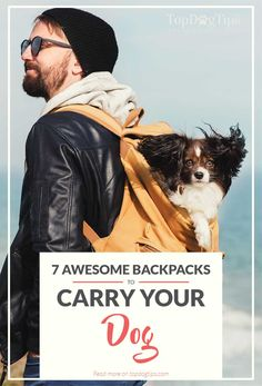 Top Best Dog Carrier Backpacks trending dog products from our store and get up to off. You will not find this rare products in any other store, so grab this Limited Time Discount Now! Small Medium Dog Breeds, Medium Dogs, Small Dogs, Teacup Breeds, Dog Backpack, Dog Bag, Dog Travel, Free Travel, Dog Store