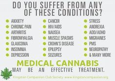 Medical Cannabis  Don't forget to add, 'life'...jk  ;-)