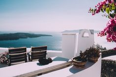 view over the ocean from a terrace in santorini, flowers on greece islands Kos, Mykonos, Santorini Greece, Santorini Island, Wine Lovers, Greece Pictures, Greece Vacation, Greece Travel, Style Deco