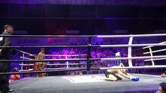 Muay Thai, Wrestling, Concert, Sports, Thailand, Places To Visit, Hairdos, Women, Recital