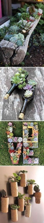 Creative Indoor And Outdoor Succulent Garden Ideas. by elisa #creativecontainergardeningideas #gardening #outdoorgardens
