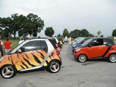 32 best smart cars images smart fortwo cars autos rh pinterest com