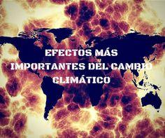 Efectos más importantes del cambio climático