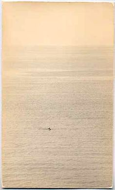 Masao Yamamoto / me...out there some where... Photography Gallery, Monochrome Photography, Fine Art Photography, Mono No Aware, Japanese Philosophy, Japan Photo, Japanese Artists, Photo Colour, Yamamoto