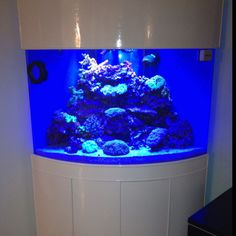 Awesome Tanks On Pinterest Fish Tanks Saltwater And