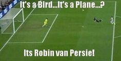 Its a Bird?
