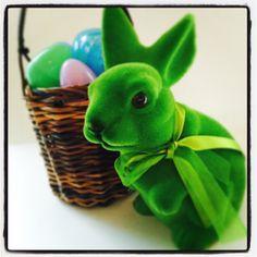 Pomp up Easter #pompandparti