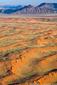 Red sand of the Namibian desert