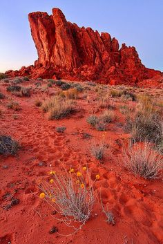 Valley of Fire - Clark County, Nevada.  #travel #red