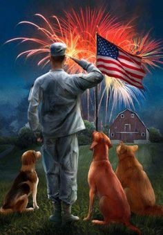 Salute America, land of the free. Becsuse of the brave I Love America, God Bless America, America America, American Pride, American Flag, American Soldiers, American History, Patriotic Pictures, Support Our Troops