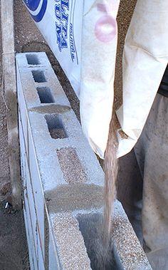 Vermiculita Intersum :: Home