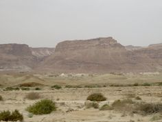 Our first view of fortress of Masada in Israel desert from Dead Sea road! What a sight! #Israel @IsraelTourism