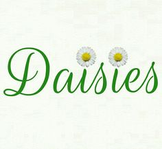 I just love the flower Daisy. Happy Flowers, Simple Flowers, Wild Flowers, Daisy Hill, Driving Miss Daisy, Sunflowers And Daisies, Daisy Love, Holding Flowers, Daisy Chain