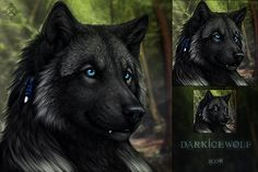 DarkIceWolf Icon by DarkIceWolf on DeviantArt