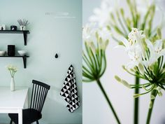 Kitchen In Mint, Black And White - Wandfarbe