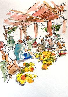 Urban Sketchers: Sketching in Goa: The Best-est mango in the world! Suhita