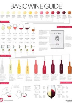 This wine infographic basically makes you an expert