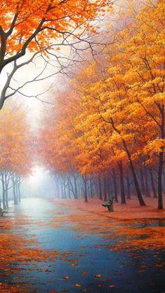 Foggy autumn day