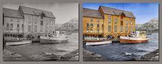 Boat Milk (Troms)