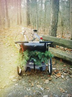 Forest in my pocket cougar Thule Bike, Wheelbarrow, Garden Tools, Pocket, Winter, Cold, Winter Time, Yard Tools, Winter Fashion