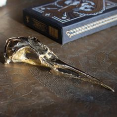 """Solid brass bird beak objet d' art measuring 4"""" in length and 1"""" at its widest.Items currently in-stock ship immediately. Please allow up to three weeks plus shipping for items no... Arctic Tern, Solid Brass, Ship, Bird, Jewelry, Jewlery, Jewerly, Birds, Schmuck"""