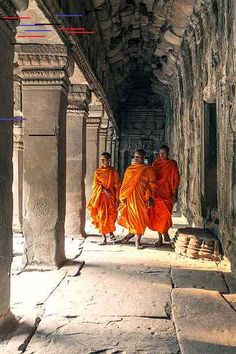 View top-quality stock photos of Three Buddhist Monks Inside Temple Angkor Wat. Find premium, high-resolution stock photography at Getty Images. Buddhist Monk, Buddhist Temple, Live Action, Monk 5e, Tibet, Angkor Vat, Important People In History, Avatar, Buddha