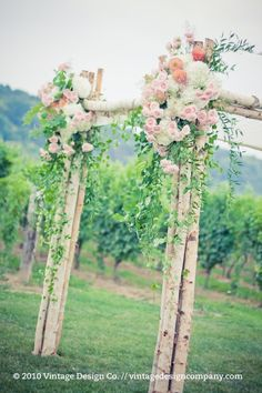 Birch Chuppah in the vineyard for outdoor vineyard wedding ceremony