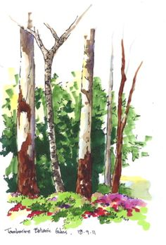 Landscape Architecture Drawing Techniques trees sketches markers architecture   art   pinterest   tree