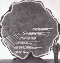 Funny pictures about The Amazing Life Of A Tree. Oh, and cool pics about The Amazing Life Of A Tree. Also, The Amazing Life Of A Tree photos. Second Crusade, Berlin Paris, Alfred The Great, In Natura, Interesting History, Interesting Photos, Interesting Stories, Interesting Facts, Looks Cool
