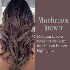 Mushroom Brown Higlight Hair color ideas 2017 - New Hair Design 30 Hair Color, Hair Color 2017, Hair Colours, Hair Color Brown, 2018 Hair Color Trends, Cool Brown Hair, 2018 Color, Gray Highlights Brown Hair, 2017 Hair Trends Long